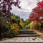 Venujte záhrade pozornosť. 5 inšpirácii na krásne zelené záhrady